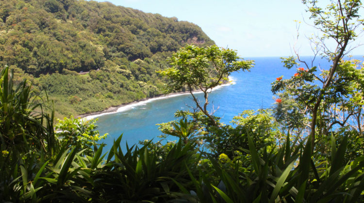 a guide to the road to hana