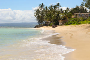 things to do north shore oahu