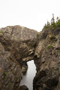 Twillingate Things To Do